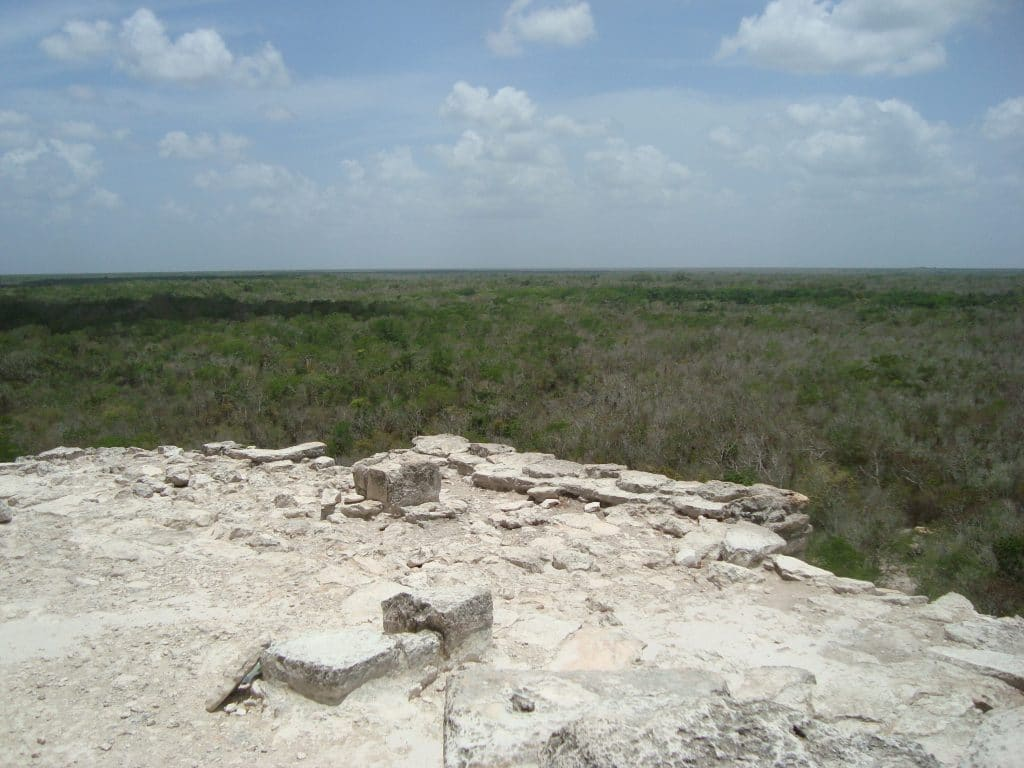View from Maya Ruin over the jungle