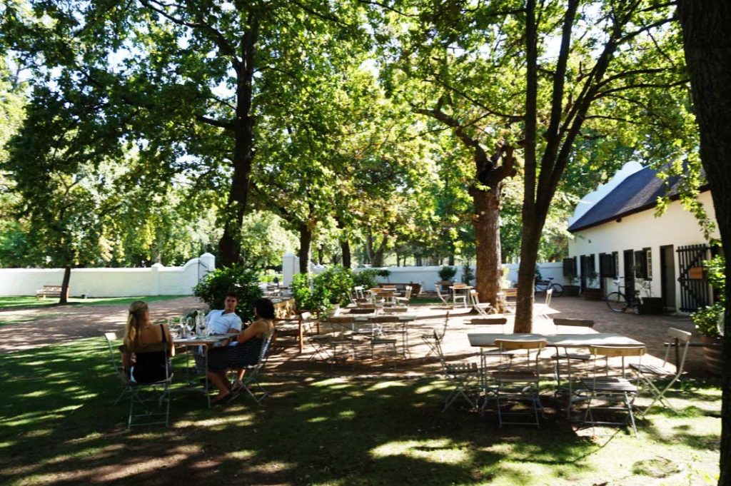 wine tasting under the trees at Boschendal