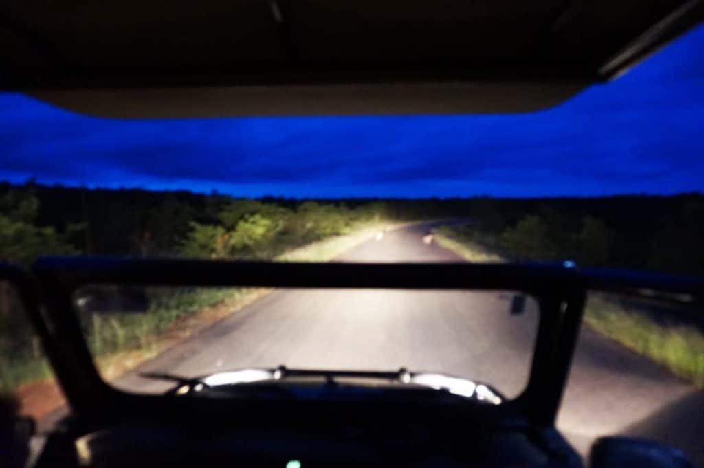 jeep at night safari