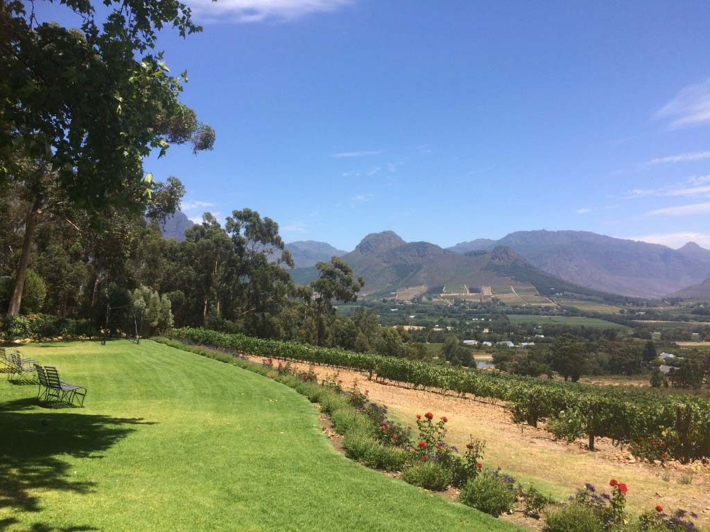 Wine tasting and lunch with mountain view