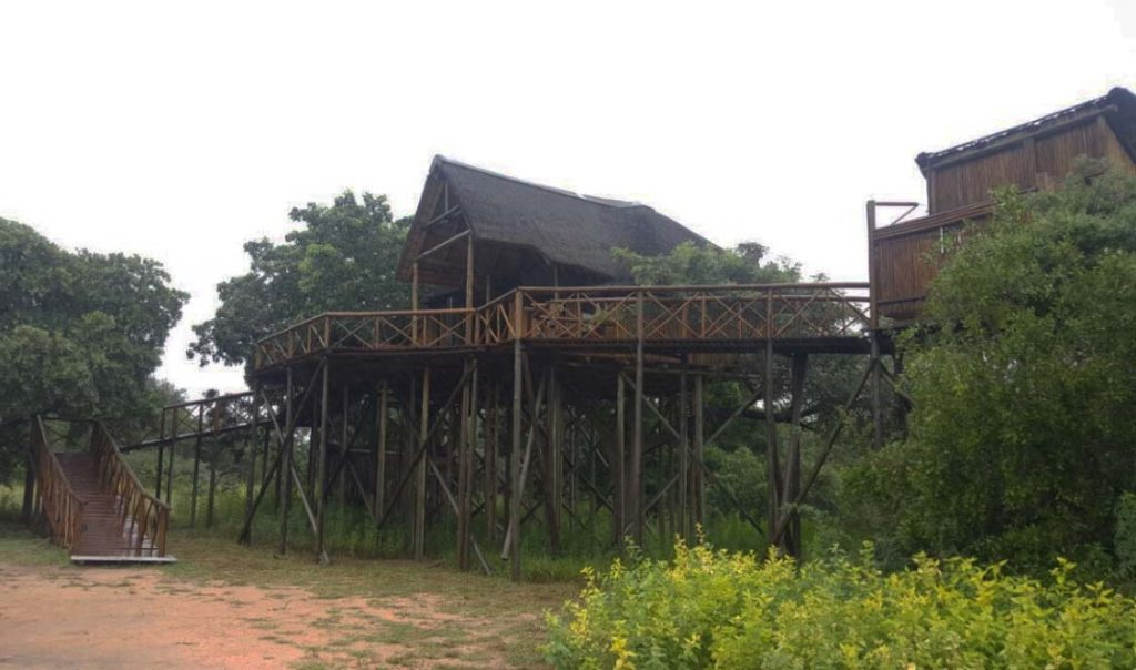 Tree lodge on high poles in the bush