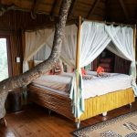 Bedroom in the tree lodge