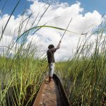 by mokoro boat going into the okavango delta