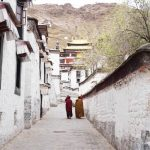 monks at Tashi Lhunpo monastery during my tibet tour