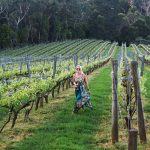 In the vines at Paringa Estate