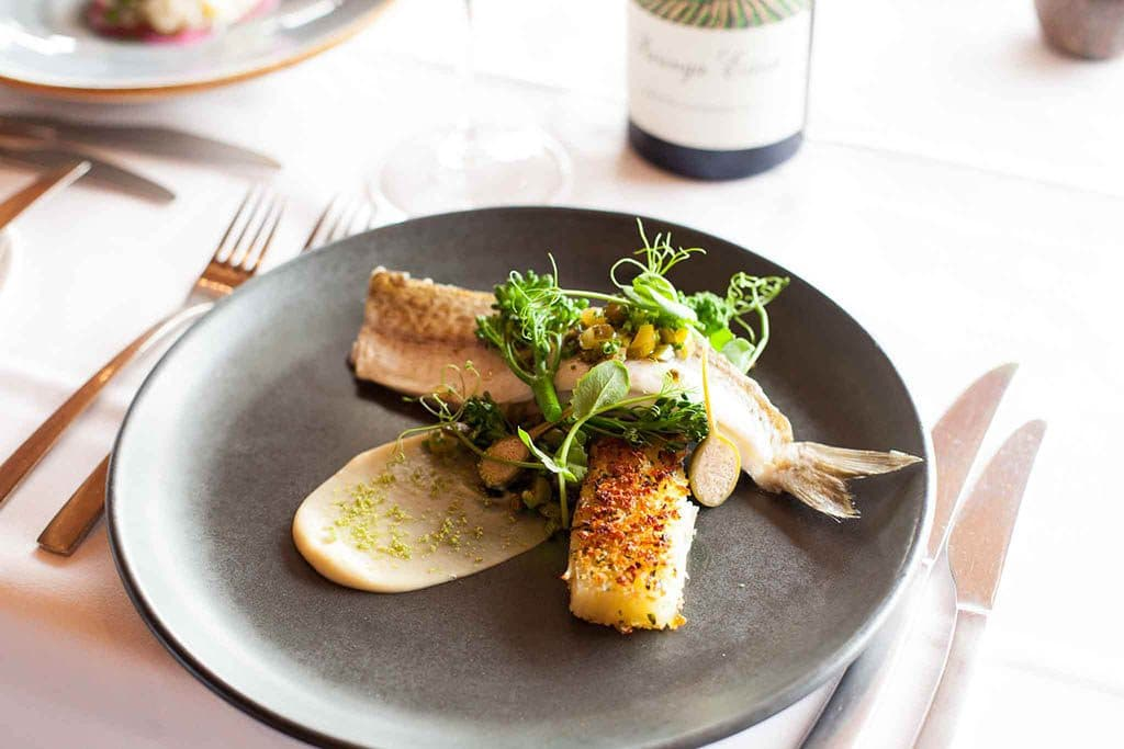 Fish and wine lunch at Paringa Estate