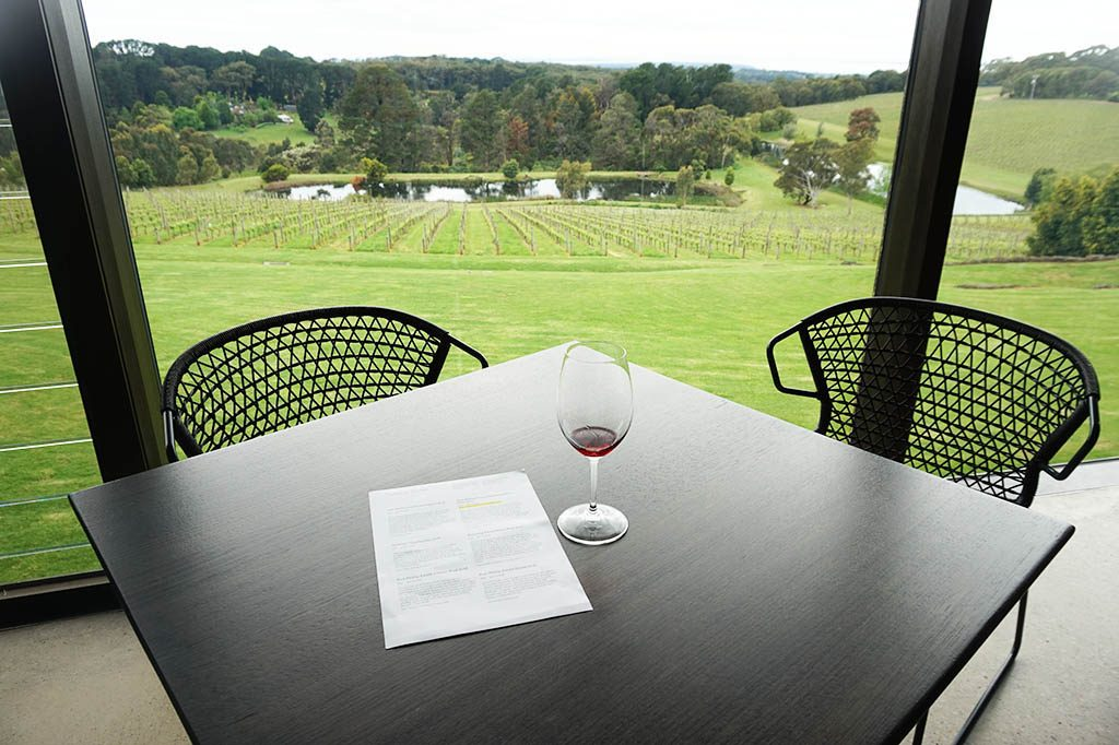 wine tasting with gorgeous views over the green lush garden
