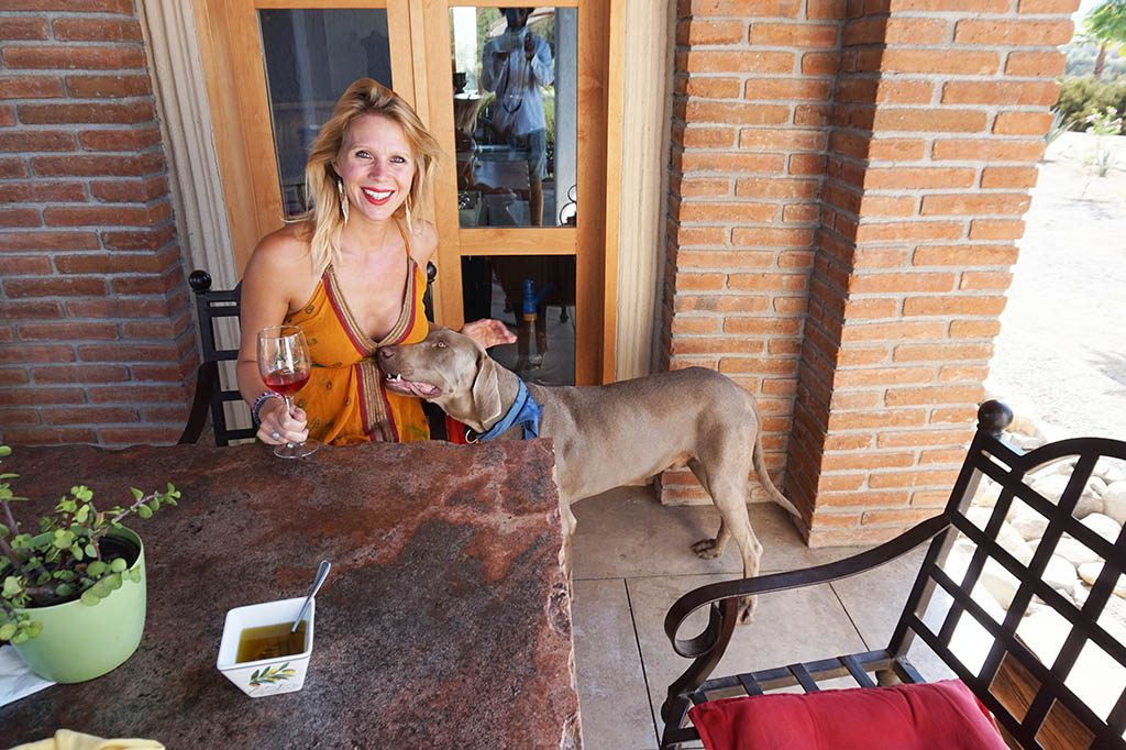 picture with wine tasting and a dog of the winery