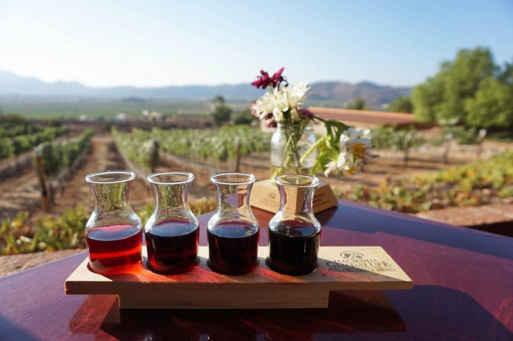 sample of four different wines at Hacienda Guadalupe