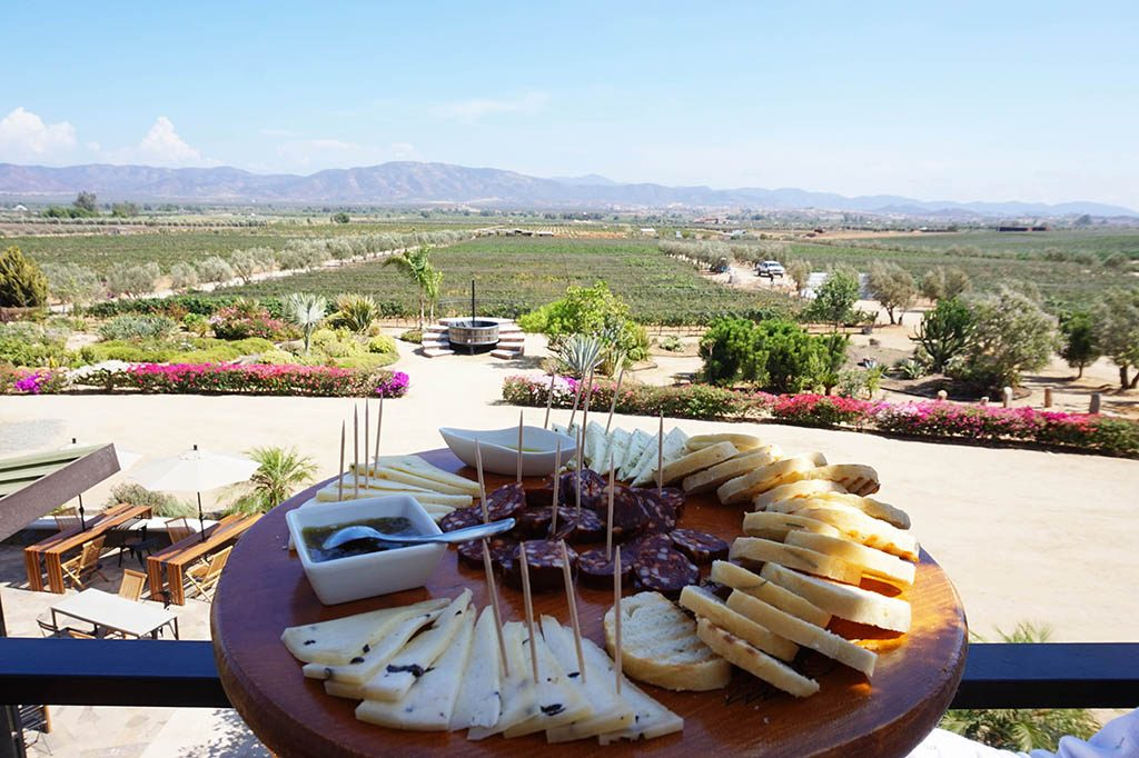 Cheese platter in Finca la Carrodilla