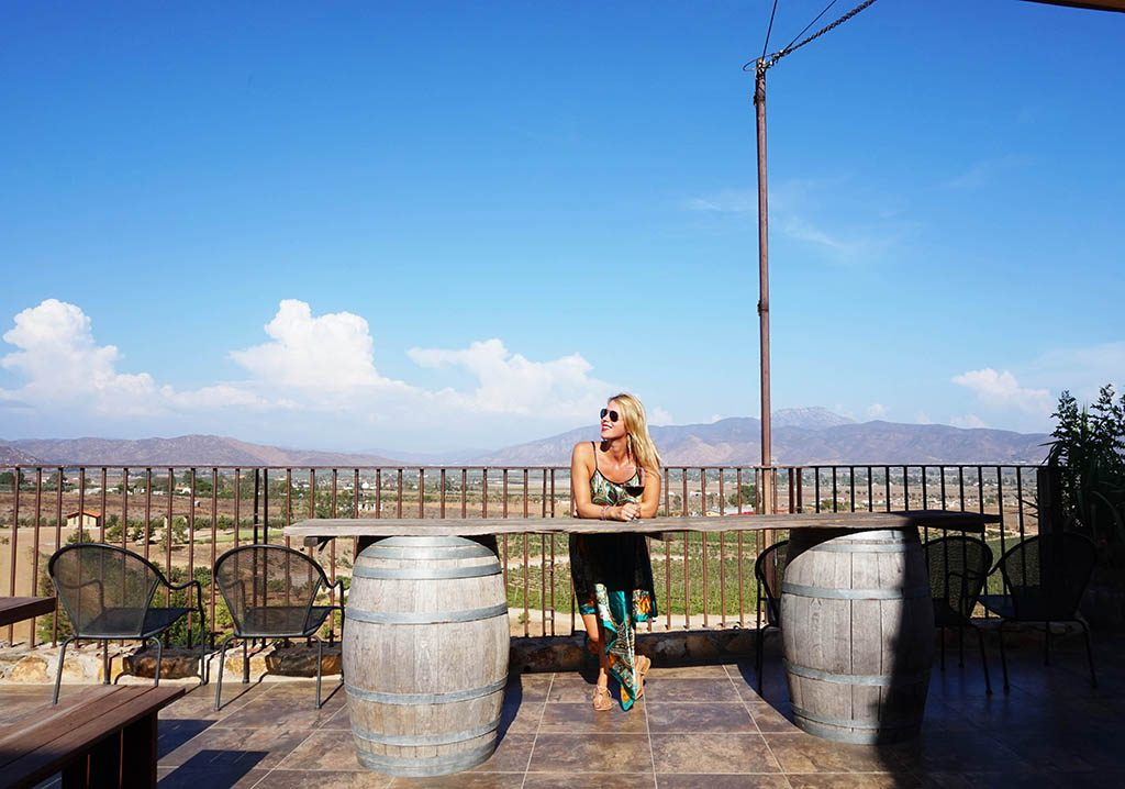 360 view from the terrace of Las Nubes winery