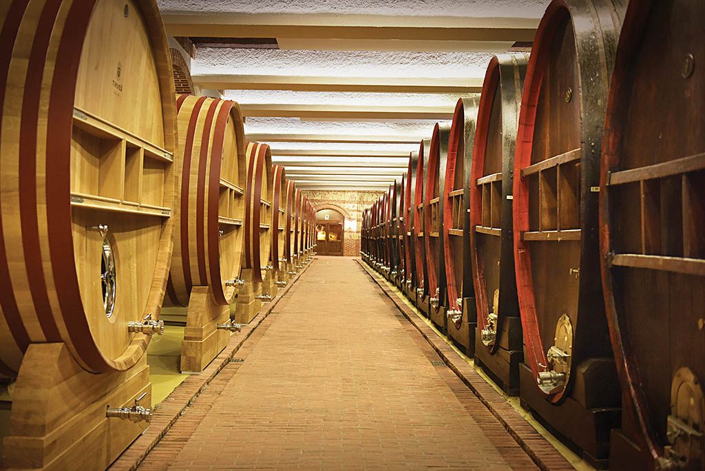 Big wine barrels in the cellar of Tikves Winery