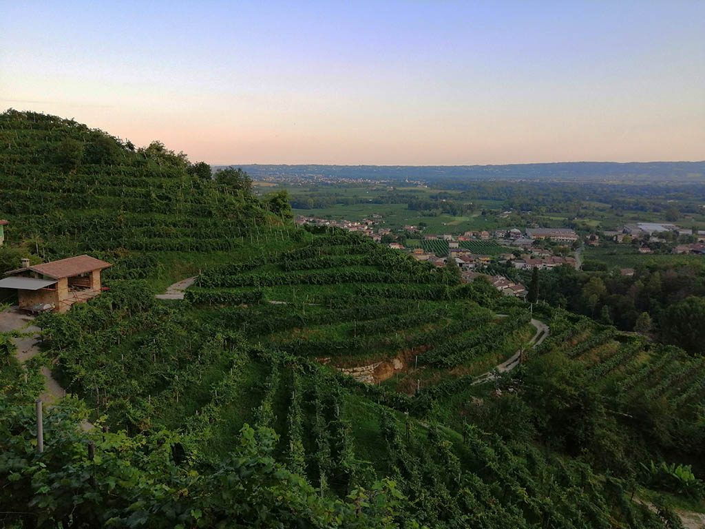 sunset along the prosecco wine route